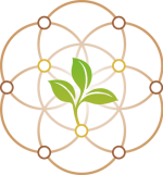sara-deposy-zertifikat